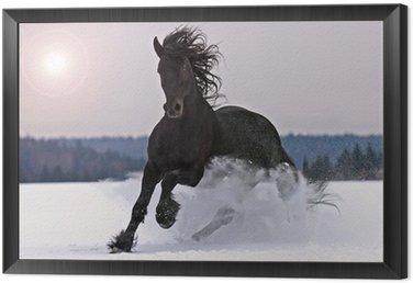 Tavla i Ram Frisiska hästen på snö