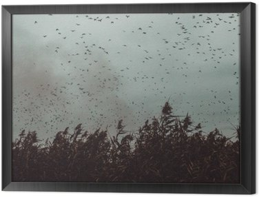 Tavla i Ram Gäng Fåglar som flyger nära sockerrör i en mörk Sky-vintage stil svart och vitt