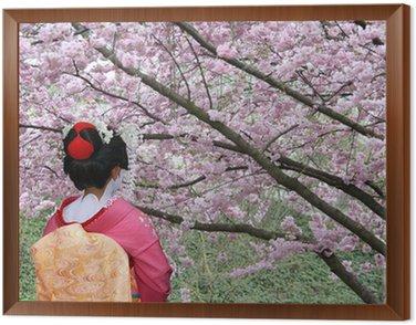 Tavla i Ram Geisha och blommande Sakura träd