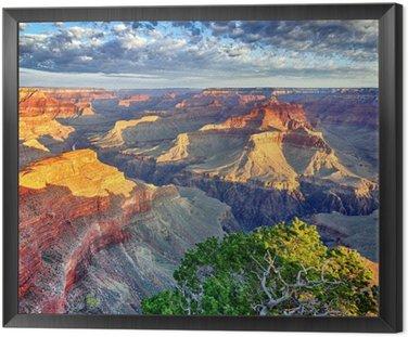 Tavla i Ram Morgonljus vid Grand Canyon