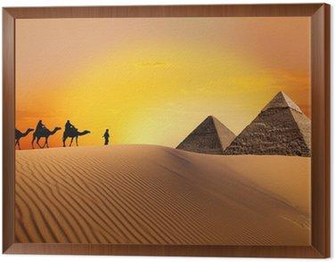 Tavla i Ram Pyramid, kamel och solnedgång