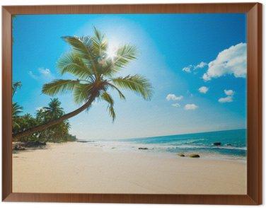 Tavla i Ram Tropisk strand