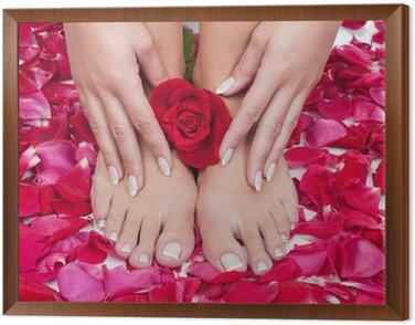 Tavla i Ram Vackra kvinnans händer och ben med röd rosenblad