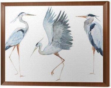 Tavla i Ram Vattenfärg häger fåglar