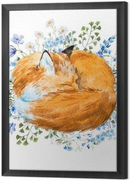 Tavla i Ram Vattenfärg sovande räv