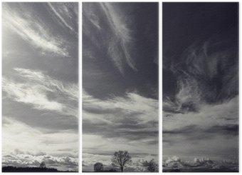 Tríptico Blanco y negro foto del paisaje de otoño