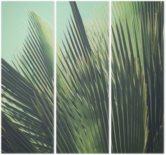 Abstract tropical vintage background. Palm leaves in sunlight. Triptych