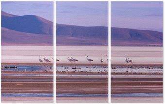 Triptych Flamingo
