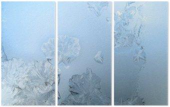 Frosty pattern at a winter window glass Triptych