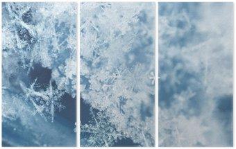 Frosty snow flakes Triptych