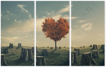 Triptych Heart shaped tree in cleared forest