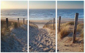 path to North sea beach in gold sunshine Triptych