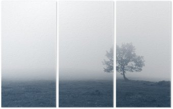 Triptych solitary tree with fog
