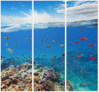 Underwater coral reef with horizon and water waves Triptych