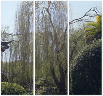Nice Willow Tree Triptych Photo Gallery