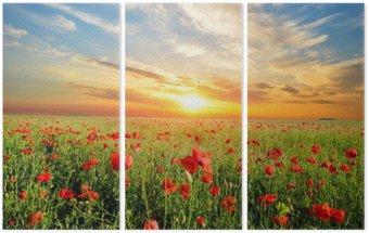 Triptychon Feld mit Mohnblumen