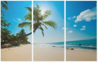Triptychon Tropenstrand in der Sonne