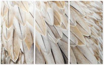Triptychon Vogelfedern