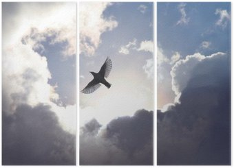 Triptych Anděl Bird v nebi