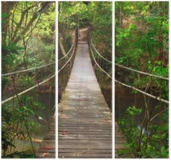 Triptych Bridge do džungle, Národní park Khao Yai, Thajsko