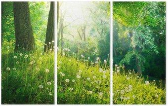 Triptych Jarní přírody. Krásná krajina. Zelená tráva a stromy