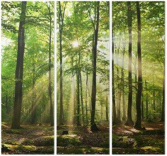 Triptych Les