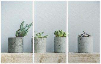 Triptych Sukulenty v DIY betonu hrnci. Skandinávský interiér pokoje výzdoba