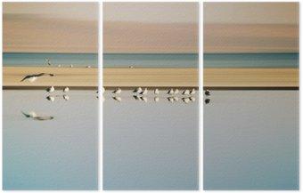 Triptych Vogelschwarm v Reihe / Ein kleiner vogelschwarm v Reihe stehender möwen einer Brutkolonie am Saltonsee v Kalifornien.