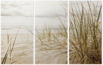 Triptych Zblízka vysoké trávě na pláži během zatažené sezóny