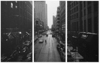 Triptyk Svartvita Chicago gator