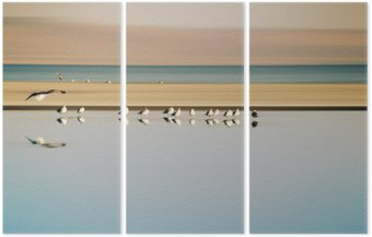 Triptyk Vogelschwarm i Reihe / Ein kleiner Vogelschwarm i Reihe stehender Möwen einer Brutkolonie am Saltonsee i Kalifornien.