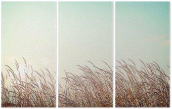 Triptyque Abstraite nature vintage background - douceur herbe plume blanche avec rétro espace de ciel bleu