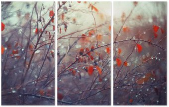 Triptyque De fond avec des branches et des gouttes de pluie