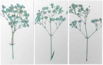 Triptyque Ensemble de fleurs sèches pressé sauvages