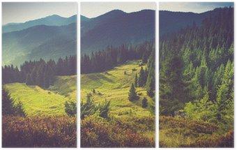 Trittico Bello paesaggio della montagna estate al sole.