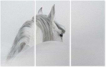 Tryptyk Andaluzyjski Koń w mgle