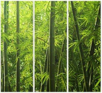 Tryptyk Bambusowy las