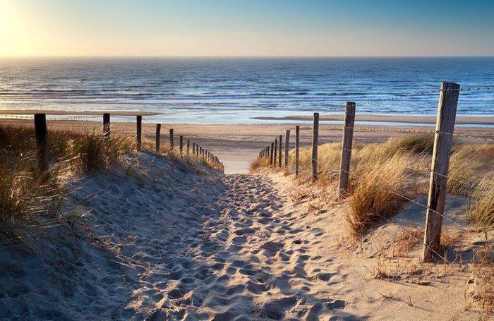 Tryptyk Droga do północnej plaży morskiej w złoto słońca - Przeznaczenia