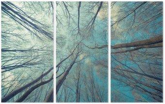 Tryptyk Drzewa Web Tło