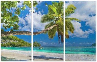 Idylliczny tropikalnej scenerii - Seszele