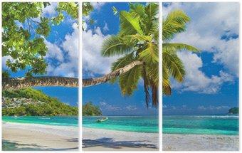 Tryptyk Idylliczny tropikalnej scenerii - Seszele