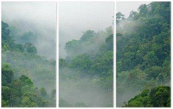 Tryptyk Las deszczowy poranek mgła