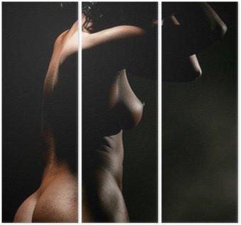 Tryptyk Naga kobieta, czarny profil.