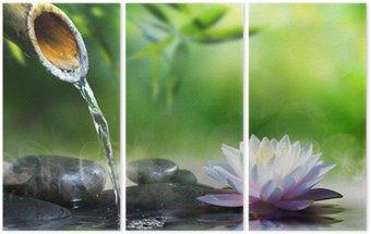 Tryptyk Ogród zen kamieniami do masażu i lilii wodnej