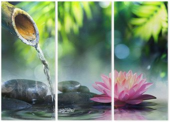 Tryptyk Ogród zen z czarnych kamieni i różowym lilii wodnej