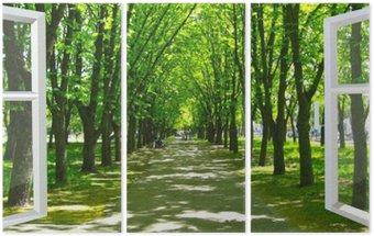 Tryptyk Okno otwarte na piękny park z wieloma zielonymi drzewami