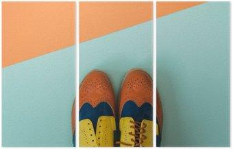 Tryptyk Płaski lay zestaw mody: kolorowe vintage buty na kolorowym tle. Widok z góry.