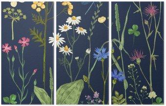 Tryptyk Ręcznie rysowane zestaw z ziół i kwiatów