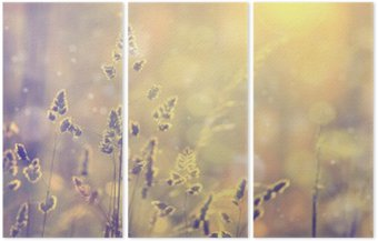 Tryptyk Retro niewyraźne trawa trawnik o zachodzie słońca z pochodni. Vintage fioletowy czerwony i żółty kolor pomarańczowy efekt filtra stosowane. Selektywne fokus stosowane.