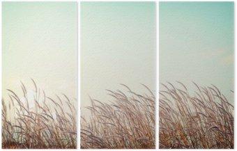 Tryptyk Streszczenie rocznika tło natura - miękkość białe piórko trawy z nieba przestrzeni retro